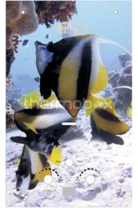Колонка газовая Matrix 10L Рыбы LCD