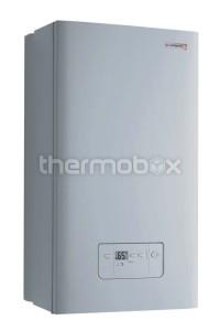 Котел газовый навесной Protherm Гепард 23 МOV дым