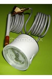 ТермоМанометр Energy, Eco 8922380 Westen